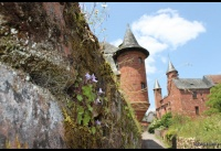 035 Collonges-la-Rouge